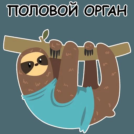Ленивец - Sticker 15