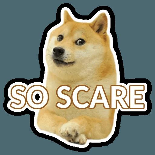 Doge - Sticker 7
