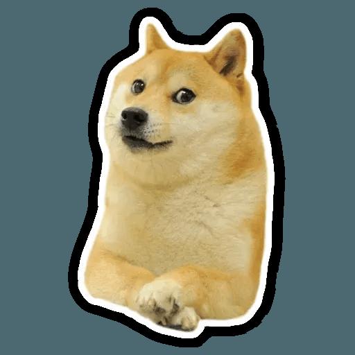 Doge - Tray Sticker