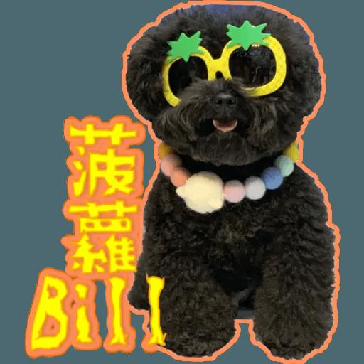 Bill Bill - Sticker 12