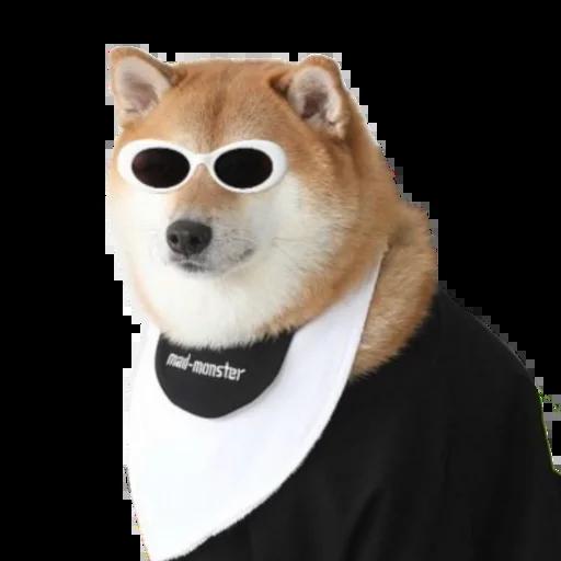 Doggo doing things - Sticker 27