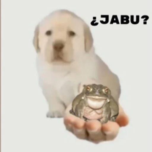 na jabu - Sticker 22