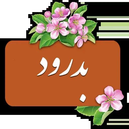 Danial4 - Sticker 8