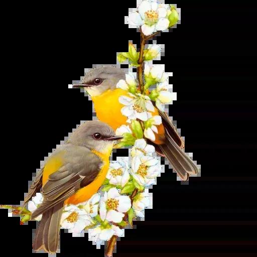 Flowerrr - Sticker 8