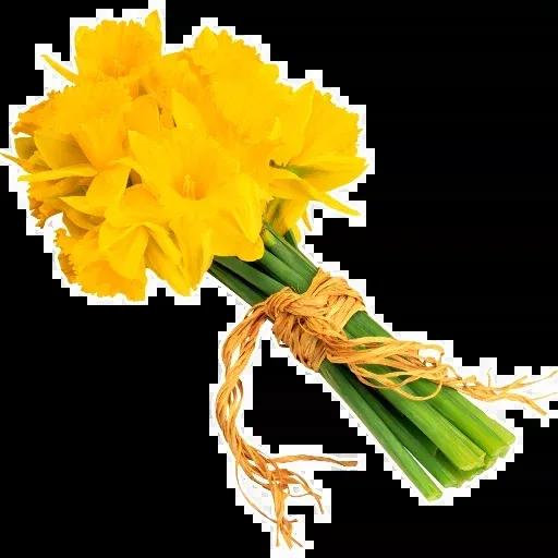 Flowerrr - Sticker 15