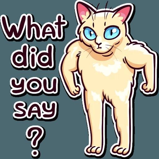 Meme Cats Stickers - Sticker 10