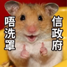 sbb HK Hamster - Tray Sticker