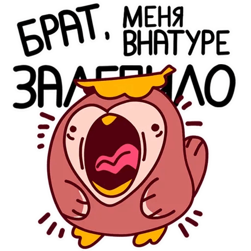 Bassim Dich - Sticker 17