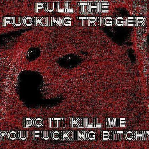 Doge - Sticker 5