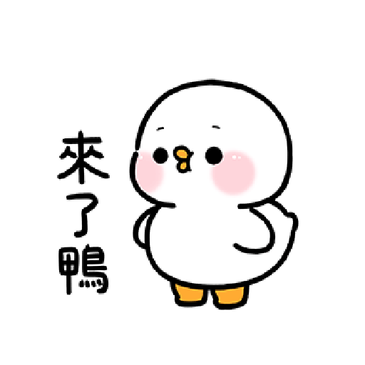 Cute and lively ducks - Sticker 15