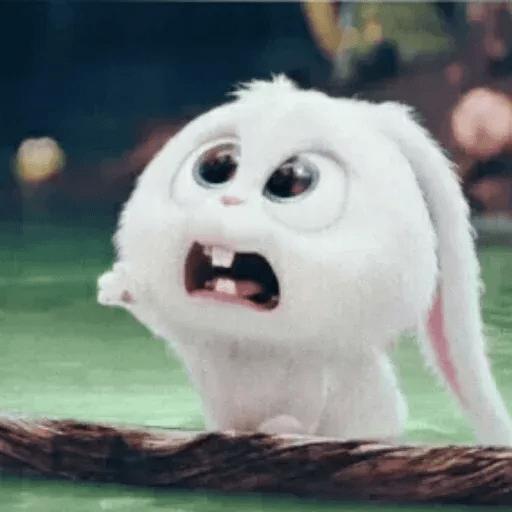 bunny reactions - Sticker 22