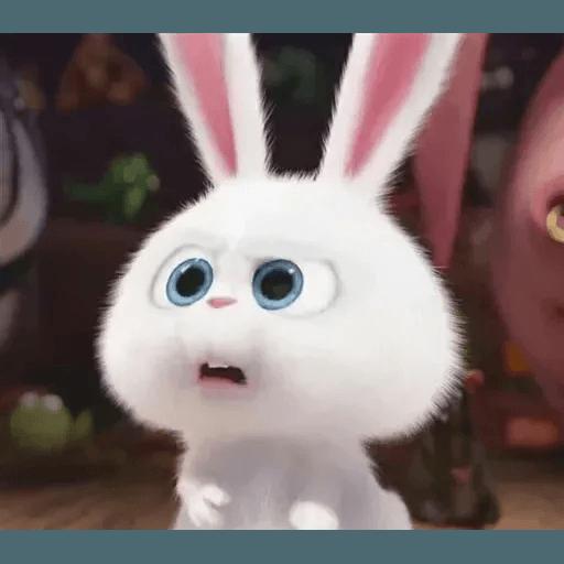 bunny reactions - Sticker 18