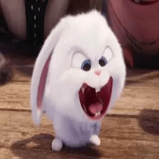 bunny reactions - Sticker 21
