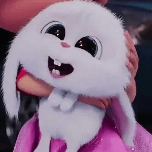 bunny reactions - Sticker 28