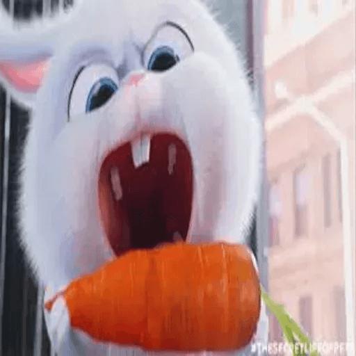 bunny reactions - Sticker 14
