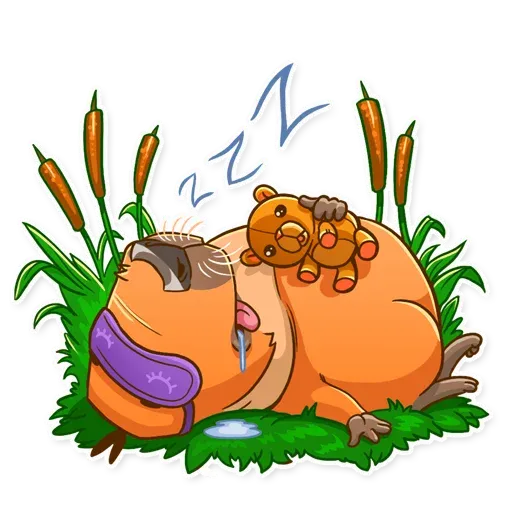 Mr. Capybara - Sticker 20