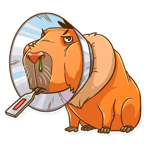 Mr. Capybara - Sticker 24