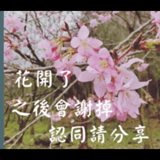 長輩圖 - Sticker 6