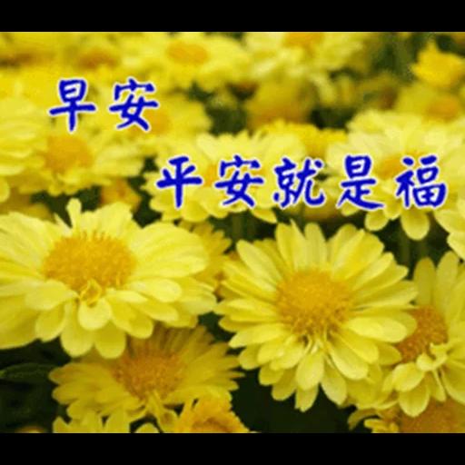 長輩圖 - Sticker 19