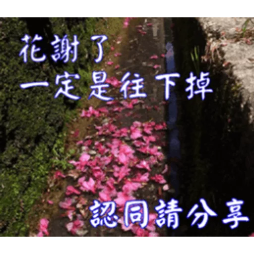 長輩圖 - Sticker 20