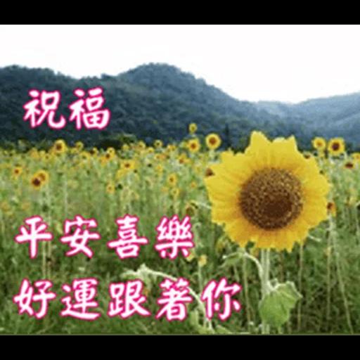 長輩圖 - Sticker 9