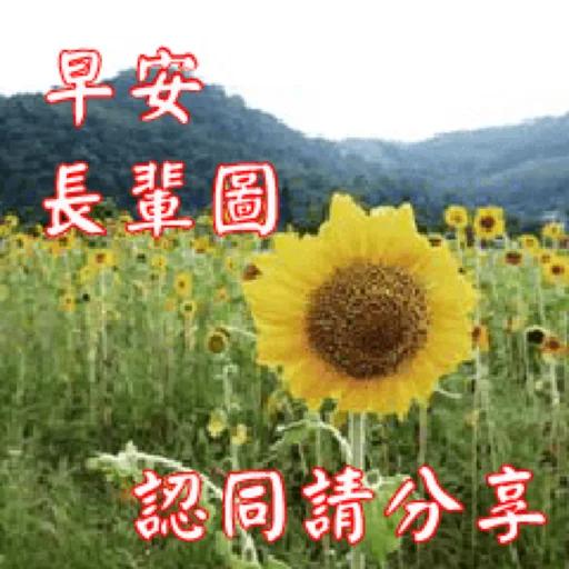 長輩圖 - Sticker 1