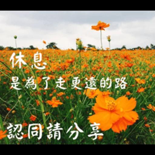 長輩圖 - Sticker 10