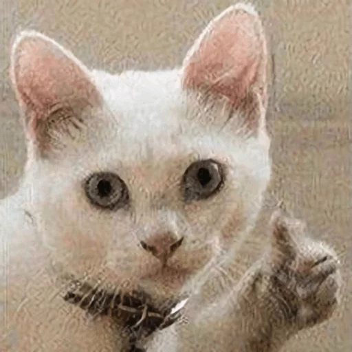Broken cats - Sticker 1