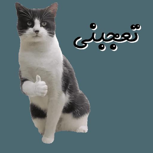 Arabic3 - Sticker 12