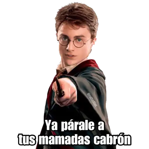 Harry Potter - Sticker 21