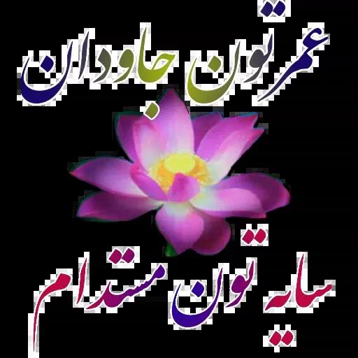 مراد اکبری ۲ - Sticker 22