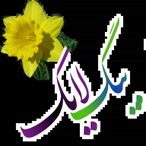 مراد اکبری ۲ - Sticker 20
