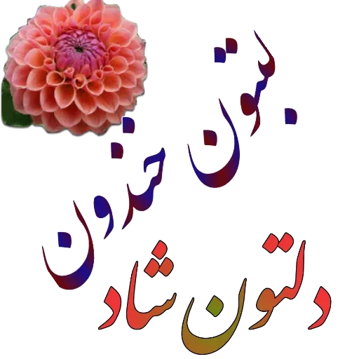 مراد اکبری ۲ - Sticker 26