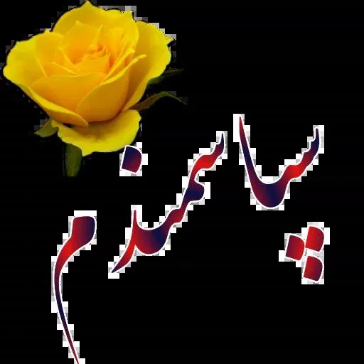 مراد اکبری ۲ - Sticker 27