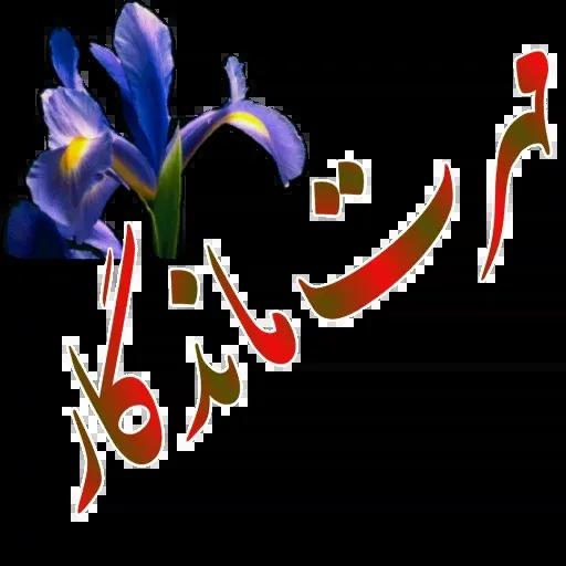 مراد اکبری ۲ - Sticker 3