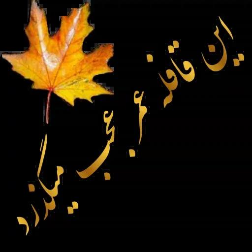 مراد اکبری ۲ - Sticker 12