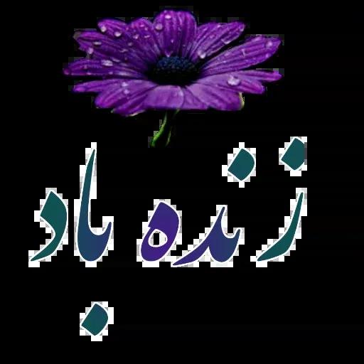 مراد اکبری ۲ - Sticker 10