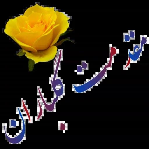 مراد اکبری ۲ - Sticker 15