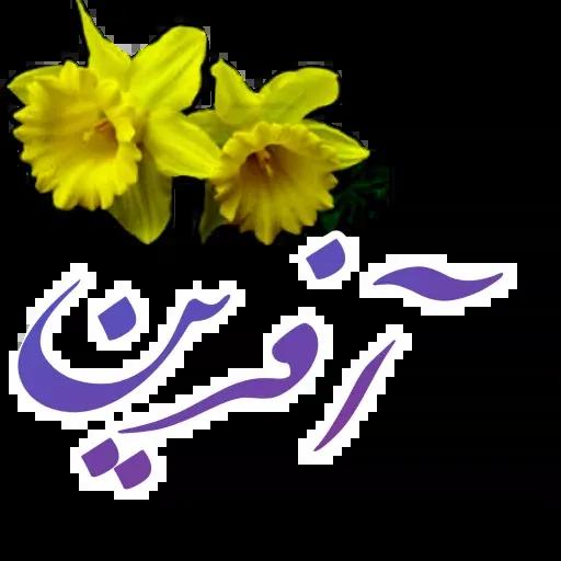 مراد اکبری ۲ - Sticker 25