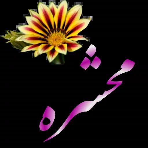 مراد اکبری ۲ - Sticker 14