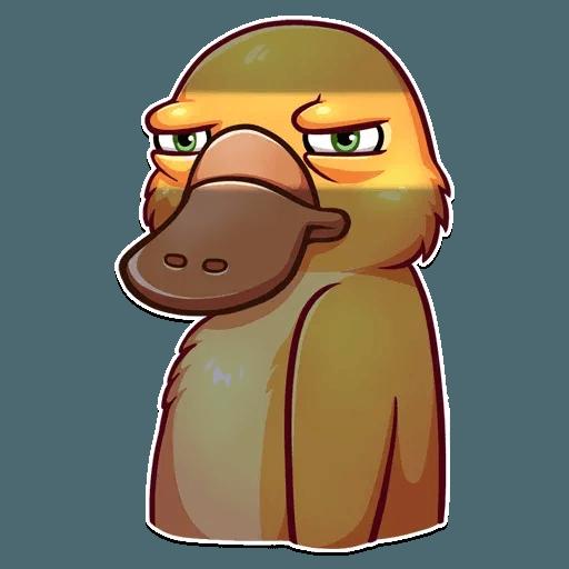 Cooper the Platypus - Sticker 9