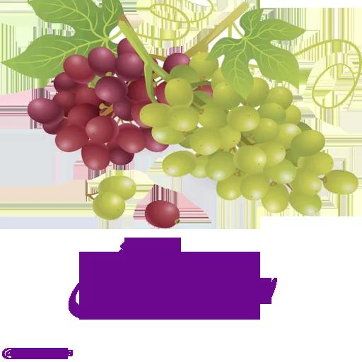 ادبی - Sticker 26