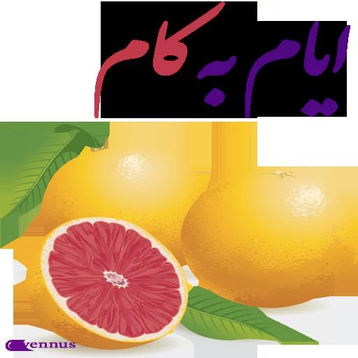 ادبی - Sticker 29