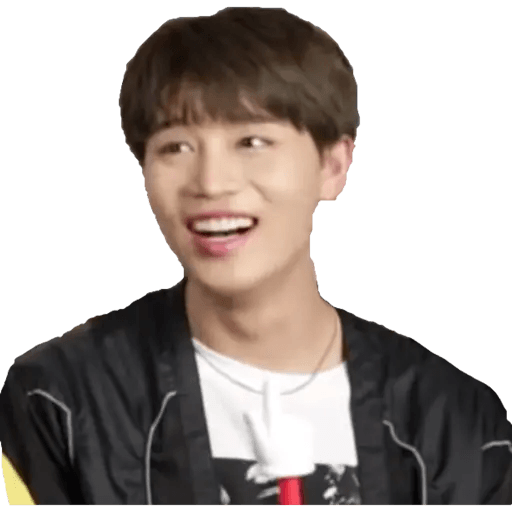 NCT memes - S2 - Sticker 11
