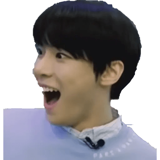 NCT memes - S2 - Sticker 16
