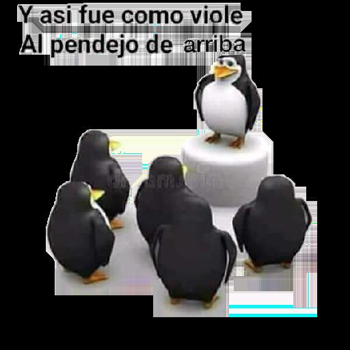 Pingüinos - Sticker 30