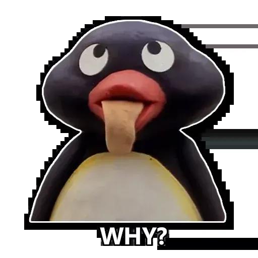 Pingüinos - Sticker 22