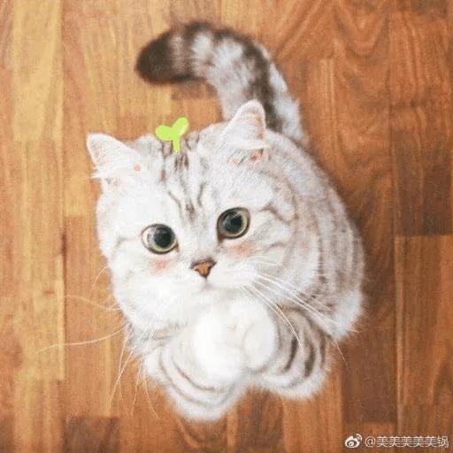 Meow:3 (2) - Sticker 24