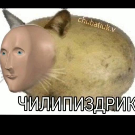 шизааааа - Sticker 25