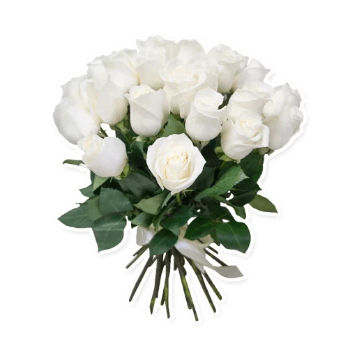 White Flowers @ykinanah - Sticker 18